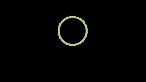 Middle logo1
