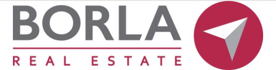 Logo borla real estate