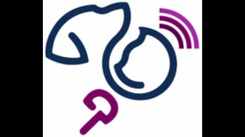 Middle mobiler ultraschall kardiologie sonographie profilbild 180x180