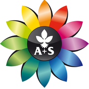 Middle a s logo
