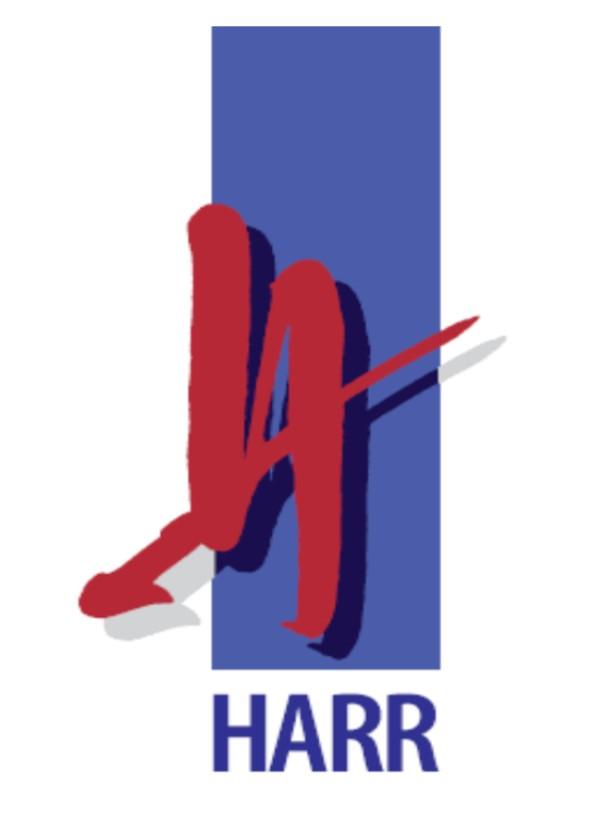 Logo 2013 alleine