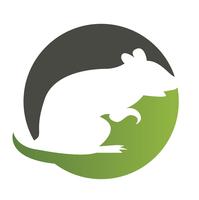 Large logo ms 1